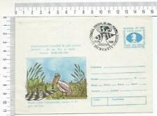 25519) Romania 5.9.1991 Stamped Cover Chess - Chess World