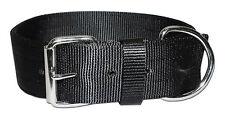 """Pitbull Type Dog Collar 2"""" - Yard Collar Pig Bull Terrier Dog - Black"""
