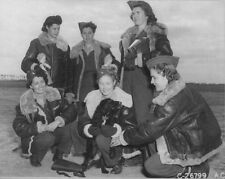 WW2 Photo WWII  US WACS with Dog US Army Air Corps  World War Two / 1550