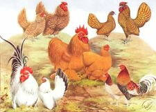 GAME FOWL.Wright.Bantams.Frizzles;Buff Pekins;Golden Sebrights;Japanese 1910