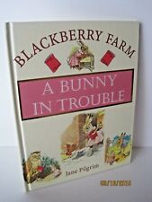 Blackberry Farm: A Bunny In Trouble by Jane Pilgrim