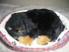 PUPPY IN DOG BED TOY