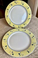 """Royal Doulton BLUEBERRY 10 1/4"""" Dinner Plates - Set of 2 - Yellow Blue and White"""