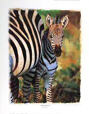 "ROB HEFFERAN ""In Her Presence"" zebra africa SIGNED LTD! SIZE:49cm x 38cm NEW"