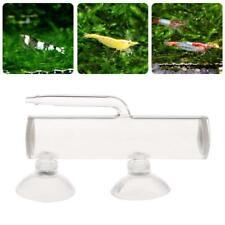 Aquarium Egg Incubator Hatch Crystal Shrimp Fish Tank Transparent Glass Supplies