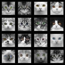 REST Katzen Patchworkstoff Stoffe Kätzchen Tiere Patchwork Baumwolle Katzenstoff