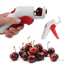 Cherry Olive Pits Pitter Stone Seed Remover Hand Held Corer Home Kitchen Tools