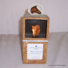 Border Fine Arts Pony Moneybox and Picture Frame