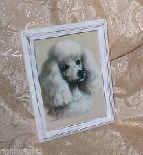SHABBY DISTRESSED FRAME CHIC WHITE POODLE PRINT FRENCH COTTAGE wall DECOR
