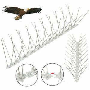Bird Pigeon Spikes Large Wide Stainless Steel Anti Bird Control Deterrent