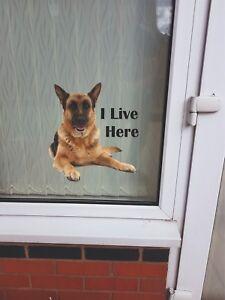 """German Shepherd """"I LIVE HERE"""" Window/Door sticker Decal"""