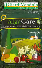 ALGACARE concime organico azotato con estratto di alghe in forma solida.