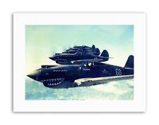 Formazione Di Volo Guerra Combattente Jet Air Force Dente di Squalo Usa poster militare