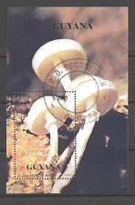 Champignons Guyane (27) bloc oblitéré