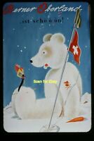 Switzerland Tourism Woman & Bear in 1950's, Kodachrome 35mm Slide aa 9-24a