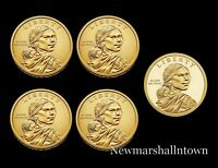 2019 P+D+S Native American Sacagawea Mint Proof Set ~ Pos A+B from Mint Rolls