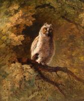 Art oil painting nice animals bird of Minerva nighthawk night owl on branch AAAA