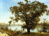 Albert Bierstadt A View from Sacramento Fine Art Print on Canvas Giclee Small