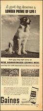 1955-Gaines Dog Meal`St. Bernard`Dog Food-Vintage Ad