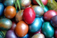 5 Colores Perla pintura Tinte Tintura decorar gelatina de huevos de Pascua Pintura Artesanía