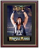 Diesel Kevin Nash Wrestling Legend Mounted & Framed & Glazed Memorabilia Gift