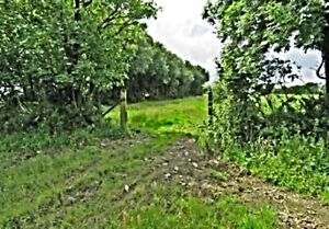 land for sale uk 1/4 acre plot property go camping investment keep animals etc