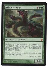 Hydra Omnivore Conspiracy MTG Japanese NM Flat Shipping