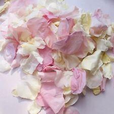 Pétale de Rose Confettis Biodégradables 1L Rose Naturel & Ivoire Eco