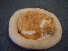 Pet Nap Plush Sleeping Tabby Kitten In Her Lamb's Wool Bed In Box