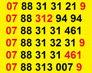 New SMARTY GOLD VIP BUSINESS EASY MOBILE PHONE NUMBER SIM CARD vodafone ee O2 UK