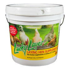 Lucky Layer Mineral Supplement (for laying hens)