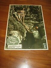FOTOBUSTA,1950,JIM DELLA GIUNGLA,Jungle Jim Johnny Weissmuller,Grey,Berke,Tarzan