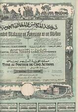 EGYPT IMPORT, EXPORT COMPANY stock certificate 5 SH