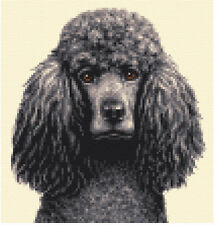 STANDARD POODLE dog, puppy,  Full counted cross stitch kit