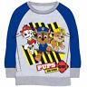 Paw Patrol Kids Sweatshirt Sweater Grey PAW8471SWEGRY