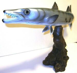 Barracuda 19 On Driftwood Styled Stand