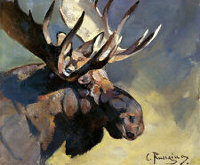 Moose Head   by Carl Rungius   Giclee Canvas Print Repro