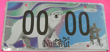 NUNAVUT  Polar Bear, Aurora, Stars Graphic SAMPLE AUTO License Plate 00 00