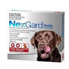 NexGard Senior Dog Flea & Tick Remedies