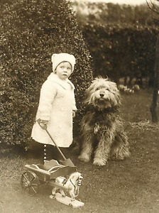 BEARDED COLLIE SHEEPDOG AND SMALL CHILD CHARMING DOG GREETINGS NOTE CARD