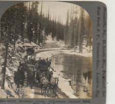 Horse Drawn Coaches Rocky Mountain Divide Yellowstone Park WY Stereoview 1904