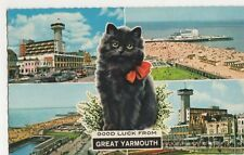 Good Luck from Great Yarmouth Black Cat 1971 Postcard, B409
