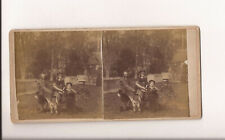 Victorian Stereocard Group With Children And Donkey In Garden Details On Reverse