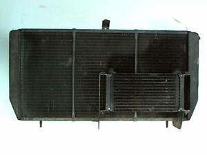 Radiateur eau  UMM ALTER  Diesel /R:21126495