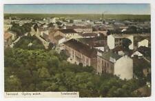 AK Ternopil, Tarnopol, Ogólny widok, Totalansicht, 1917