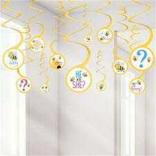Gender Reveal What Will It Bee He She Baby Shower Party Hanging Swirls