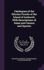 Catalogues of the Silurian Fossils of the Island of Anticosti, with Descriptions