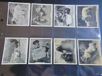 1935 OUR FAVORITES dogs cats birds Godfrey Phillips Tobacco Card Set 48 cards