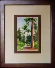 Framed Miniature Watercolor, Rocky Mountain Pines, by Vivian Ashcraft