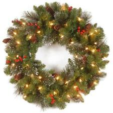 "National Tree Company 20"" Crestwood Spruce Wreath with 35 Clear Lights Tested"